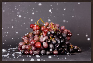 Grapes, 2013 (roseNseitz)